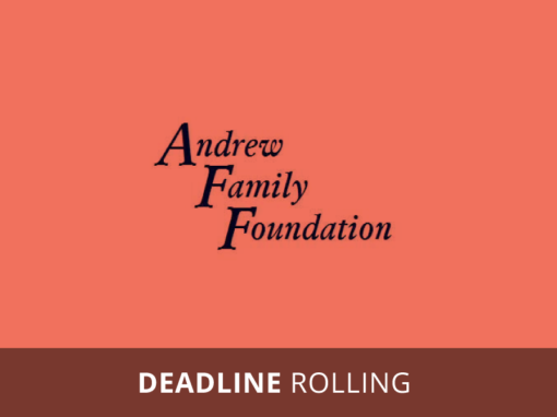 Andrew Family Foundation's Junior Board Grants